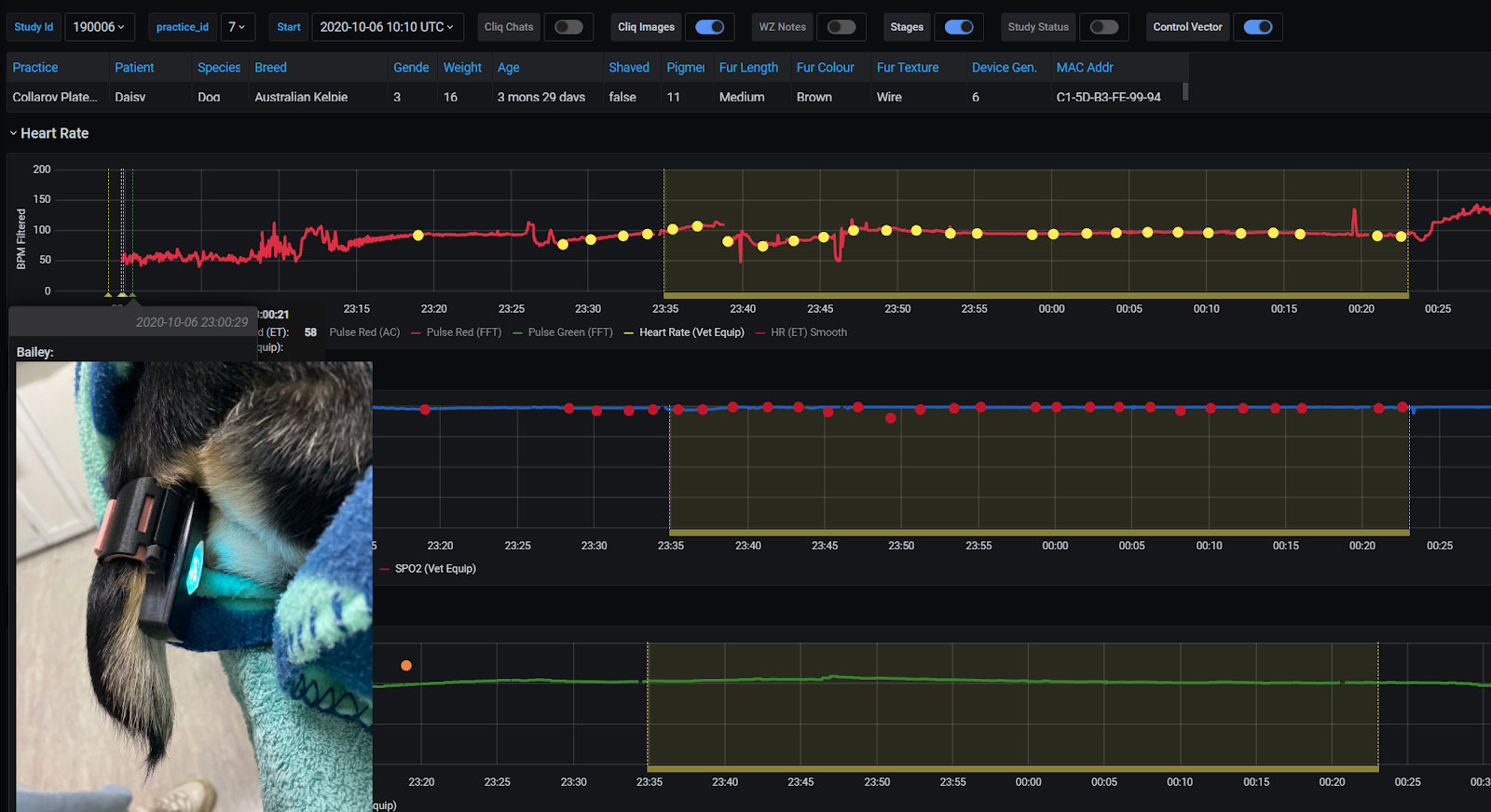 AVT's Custom Analytics Platform - Drives Validation and Analysis